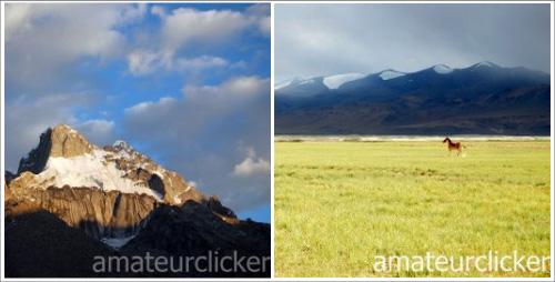Amateur Clicker's photos
