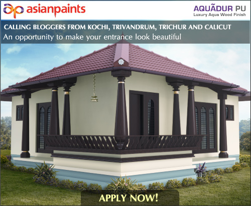 Model houses of asian paints