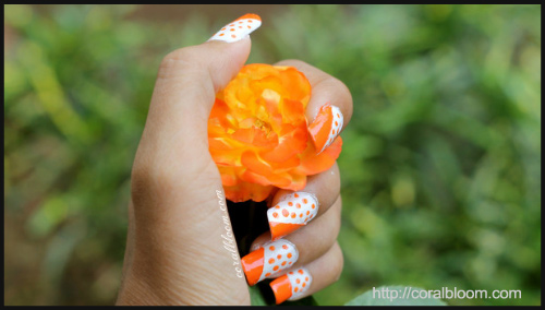 DIY Polka Nail Art - BlogAdda Collective