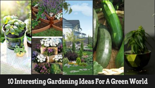 10-interesting-gardening-ideas-for-green-world-blogadda-collective