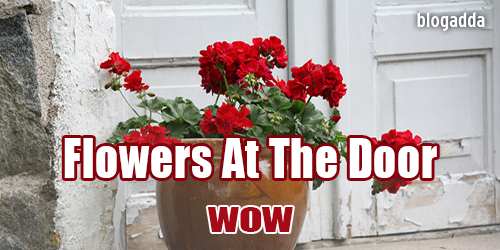 flowers-at-the-door-Wow