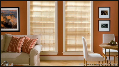 Blinds for your windows by PepperFry