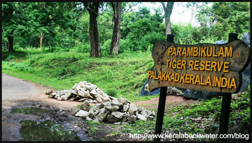 amazing-indian-destinations-summer-2-blogadda-collective Wildlife Sanctuaries and National parks in Kerala