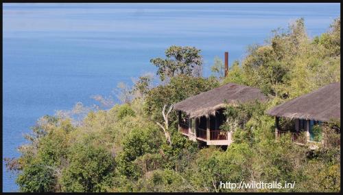 amazing-indian-destinations-summer-3-blogadda-collective Tiger Reserves, Karnataka