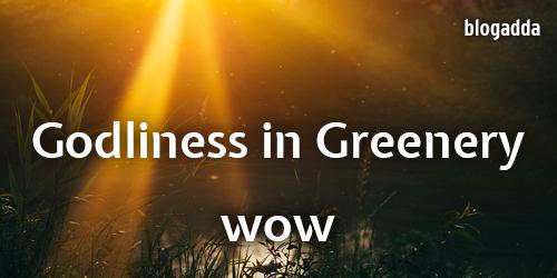 Godliness-in-Greenery-WOW-1